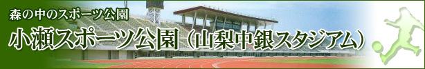 小瀬スポーツ公園(山梨中銀スタジアム)