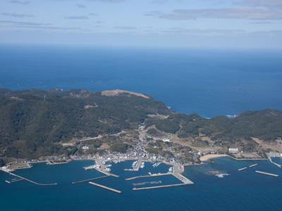 大島イメージ